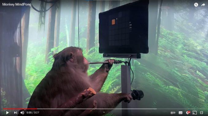 Neuralink, la societe americaine et sa technologie qui implique le jeu video